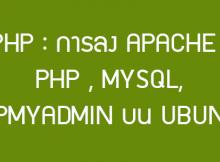 php mysql ubuntu